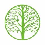 Значок зеленого дерева круглый, Стоковые Фотографии RF