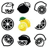 Значок лимона Стоковые Фото