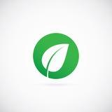 Значок или логотип символа вектора конспекта точки Eco Стоковое Фото