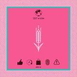 Значок колоска пшеницы или рож Стоковое Изображение