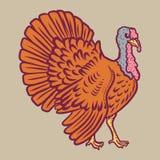 Значок крана Турции, рука нарисованный стиль иллюстрация вектора