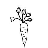 Значок моркови силуэта vegetable плоский Стоковое Изображение RF