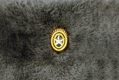 Значок на soldier& x27; крышка s Стоковые Изображения RF