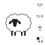 Значок овец или штосселя, логотип, шаблон, пиктограмма Стоковое фото RF