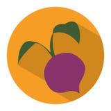 Значок овоща бураков Стоковая Фотография