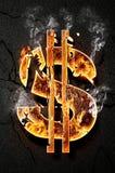 Значок доллара Стоковая Фотография