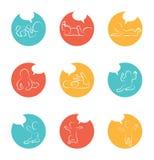Значок развития младенца, этапы роста ребенка основные этапы работ малыша первого года бесплатная иллюстрация