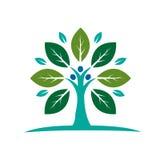 Значок фамильного дерев дерева Стоковое Изображение RF