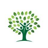 Значок фамильного дерев дерева Стоковое Изображение