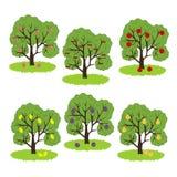 Значок фруктового дерев дерева иллюстрация штока