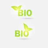 Значок экологичности био вектор Стоковое фото RF