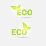 Значок экологичности вектор Стоковое Изображение