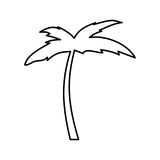 Значок Palm Beach дерева Стоковые Фото