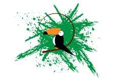 Значок Toucan Иллюстрация шаржа toucan значка вектора для сети Предпосылка splatter зеленого цвета шаблона логотипа вектора стиля Стоковое Изображение RF