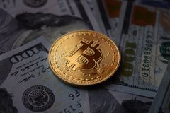 Золотая монетка Bitcoin на долларах США стоковое фото