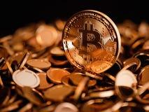 Золотая монетка Bitcoin Стоковые Изображения