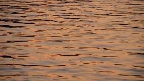 Золотая слепимость на воде