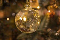 Золотая смертная казнь через повешение шарика рождества на ветви Стоковое фото RF