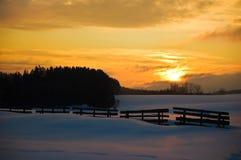 золотистая зима ландшафта Стоковое Изображение