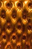 золотистая кожаная роскошь Стоковые Фотографии RF