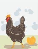 золотистая курица иллюстрация вектора