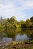 Золотистая осень на реке стоковая фотография rf