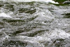 золотистая поверхностная вода пульсаций Стоковые Изображения RF