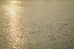 золотистая поверхностная вода пульсаций Стоковая Фотография