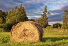 Золотистая связка сена в сельской местности стоковое фото