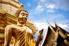 Золотистая статуя Будды в виске Таиланда Будды. Стоковые Фотографии RF