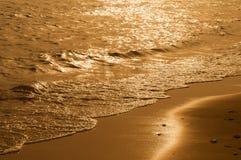 Золотистое время Стоковые Изображения RF