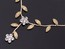 золотистое ожерелье Стоковые Фото