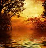 золотистое озеро Стоковые Фотографии RF