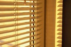 золотистое утро Стоковая Фотография RF
