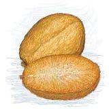Золотистое яблоко с поперечным сечением Стоковые Фотографии RF