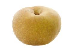 Золотистое яблоко russet Стоковое фото RF