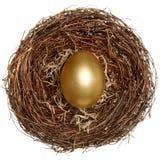 золотистое яичка принципиальной схемы финансовохозяйственное Стоковое Фото