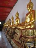 Золотистое Buddhas стоковое фото