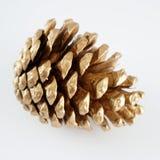 Золотистое pinecone украшение рождества золотистое белизна изолированная предпосылкой стоковое изображение rf
