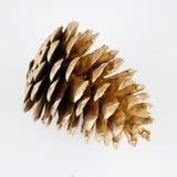 Золотистое pinecone украшение рождества золотистое белизна изолированная предпосылкой стоковое фото