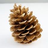 Золотистое pinecone украшение рождества золотистое белизна изолированная предпосылкой стоковая фотография rf