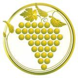 золотистые виноградины иллюстрация вектора