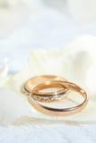 золотистые кольца Стоковые Фотографии RF