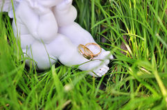 золотистые кольца 2 wedding Стоковые Изображения RF