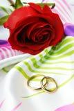 золотистые красные кольца подняли Стоковая Фотография RF