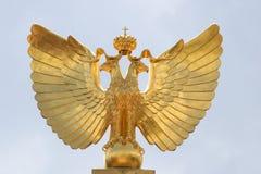 золотистые крыла Стоковая Фотография