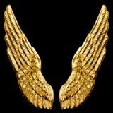 золотистые крыла Стоковые Фото