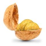 Золотистые монетки в ореховыйой скорлупе. Стоковое Изображение