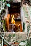 Золотистый Будда Стоковая Фотография