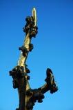 золотистый вал Стоковые Изображения